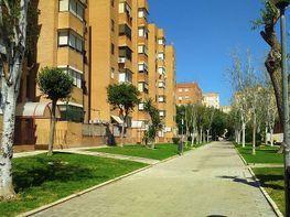 Wohnung in verkauf in Av. Ciencias-Emilio Lemos in Sevilla - 358243483