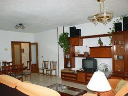 Wohnung in verkauf in calle Gonzalo Bilbao, San Roque in Sevilla - 303445626