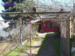 Foto 5 - Terreno en venta en Realejos (Los) - 306641332