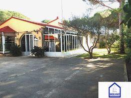 Freistehendes haus in verkauf in Chiclana de la Frontera - 303906087