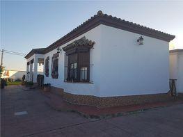 Casa en alquiler en calle Camino Caña de Los Barrancos, Chiclana de la Frontera