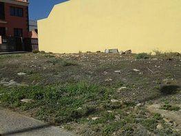 Foto - Solar en venta en calle Las Eras, Fasnia - 304508035