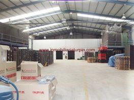 Nave industrial en venta en Blanca - 345717816