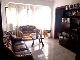 Foto - Piso en venta en calle Arxiduc, S´Oliverar en Palma de Mallorca - 313283412