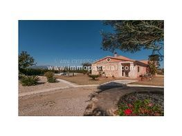 Finca en es velà, muro con 450 oliveras, tan solo 5 min. de la playa - Finca rústica en venta en Muro - 307466635