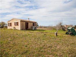 Grundstück in verkauf in polígono Parcela, Montuïri - 316384804