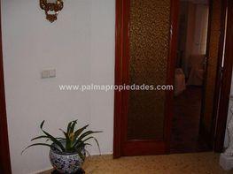 Pis en venda calle Foners, Palma de Mallorca - 410346816