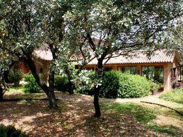 Haus in miete in Boadilla del Monte - 359355768