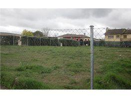 Terreny en venda Escalona - 316763365