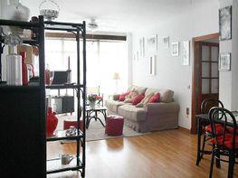 Foto1 - Piso en venta en Arcos de la Frontera - 348394663