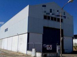 Fabrikationshalle in verkauf in Sanlúcar de Barrameda - 348483768