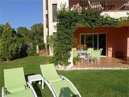 Erdgeschoss in verkauf in Calvià - 320785266