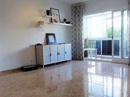Wohnung in verkauf in calle Doctor Marañon, Palma-Palmilla in Málaga - 342309910