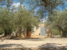 Imagen sin descripción - Finca rústica en venta en Camarles - 322102422