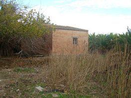 Imagen sin descripción - Finca rústica en venta en Deltebre - 322105185