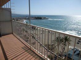 Petit appartement de location à paseo Marítimo Rey de España, Zona Puerto Deportivo à Fuengirola - 343228609