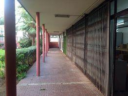 Local comercial en venda calle Ricardo Soriano, Nagüeles Alto a Marbella - 332660238