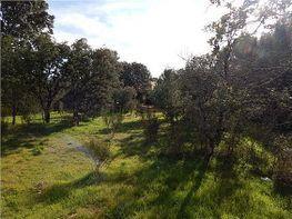 Terreny en venda Guadarrama - 430190699