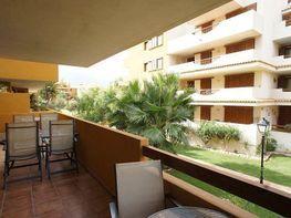 Apartamento en venta en calle Punta Prima, Torrelamata - La Mata en Torrevieja - 336318564
