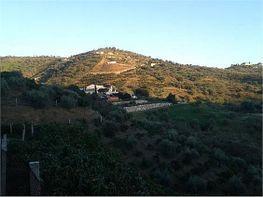 Grundstück in verkauf in carretera A Macharaviaya, Benagalbon - 326258798