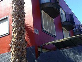 Casa adossada en lloguer calle Igualdad, San Cristóbal de La Laguna - 362239826