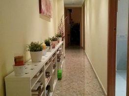 Appartamento en vendita en calle Campamento, Benimàmet en Valencia - 420372900