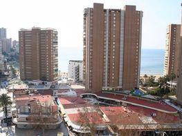 Foto - Piso en venta en calle Levante, Levante en Benidorm - 384354856