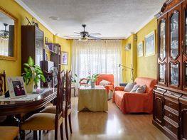 Flat for sale in calle Vicente Blasco Ibáñez, Centro in Torrevieja - 326649585