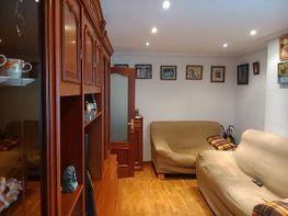 Piso en venta en calle Tineo, Vallobin-La Florida-Las Campas en Oviedo - 328099431