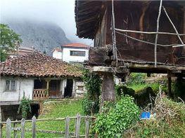 Landhaus in verkauf in Teverga - 330199154