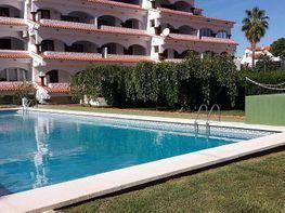 Wohnung in verkauf in calle Dels Quatre Termes, Alcossebre - 343377574