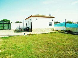 Casa rústica - Casa en venta en Sanlúcar de Barrameda - 357095439