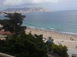 Wohnung in verkauf in calle Cala de Benidorm, Poniente in Benidorm - 327659802