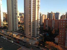 Foto - Apartamento en venta en calle Avenida Alfonso Puchades, Benidorm - 375495546