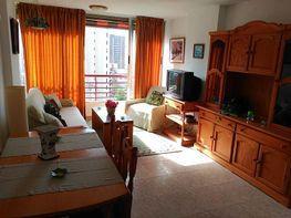 Foto - Apartamento en venta en calle Rincon de Loix, Rincon de Loix en Benidorm - 397368218