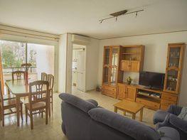 Wohnung in verkauf in calle Del Gànguil, Port de Pollença - 343325471