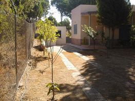 Entrada de vehículos. al fondo se aprecia el dormitorio anexo y aseo - Chalet en venta en Isla Cristina - 331627199