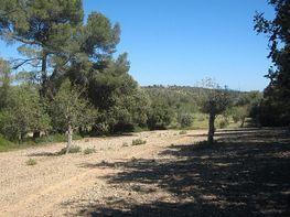 Terreny en venda calle Son Moranegri, Montuïri - 362613989