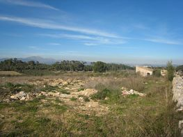 Terreny en venda calle Pmv, Muro - 362615033