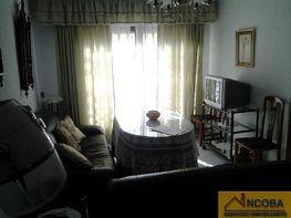 Wohnung in verkauf in Zafra - 340250182