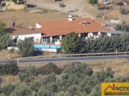 Landgut in verkauf in Zafra - 340250371