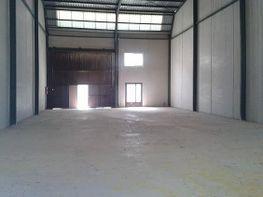 Nave industrial en venta en Librilla - 339023334