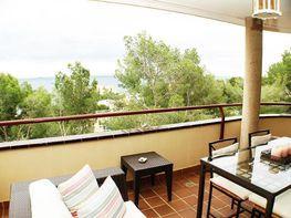 Wohnung in verkauf in calle Falco, Calvià - 358369553