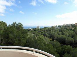 Wohnung in verkauf in calle Menorca, Calvià - 394012228
