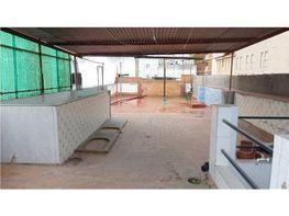 Casa en vendita en San Roque en Badajoz - 336004565