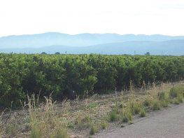 Terreny en venda Santa Bàrbara - 335942034