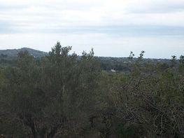 Terreny en venda Tortosa - 383094903