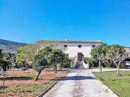 Finca rústica en venta en Palma de Mallorca - 355523205