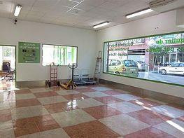 Trastero en alquiler en calle Virgen de Fátima, Plaza de toros en Fuengirola - 341810796