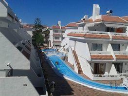 Apartment in miete in calle Playa de Las Americas, Adeje - 351199395